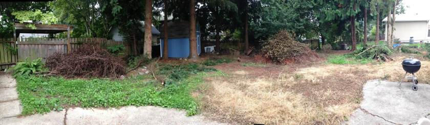 Residential backyard with slash piles.